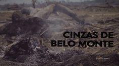 Documentário segue o desmatamento feito por Belo Monte para limpar a área que será alagada. Árvores são queimadas irregularmente…