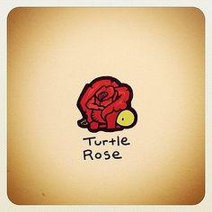 turtle-rose-turtle-wayne.jpg 350×350 pixels