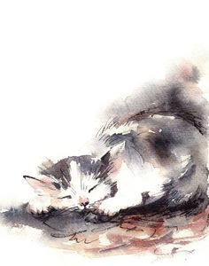 Sleeping Kitten Watercolor Art Print of Original Watercolor Cat Painting, will be signed/dated on the back by 'CanotStopPrints' on Etsy♥•♥•♥