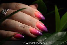 Manicure natural #30077