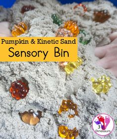 Pumpkin & Kinetic Sand Sensory Bin - a simple and easy fall sensory bin with pumpkins and kinetic sand for kids to play in. - 3Dinosaurs.com #kenticsand #sensorybin #fallsensorybin #pumpkinsensorybin #3dinosaurs Fall Sensory Bin, Sensory Bins, Kinetic Sand, Gross Motor, Arts And Crafts, Pumpkin, Blog, Kids, Young Children