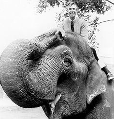 Mr. Rogers is on an elephant. #awesome #kids #mr_rogers