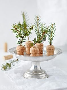 Mini christmas trees. Styling Sanna Kekalainen, Photo Reetta Pasanen. Kodin Kuvalehti Magazine.
