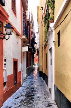 Calle Reinoso, Sevilla.