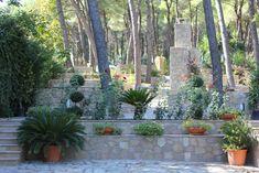 Hygge, Greek, Plants, Greek Language, Planters, Greece, Plant, Planting