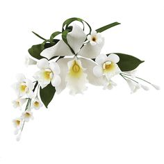 Cymbidium Orchid Spray, White, 4 Count by Chef Alan Tetreault New Fondant, Coloring, Flowers & Edibles 4/26.99
