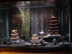 Goldfish Tank by BravoFoto, via Flickr