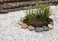 water conservation landscaping