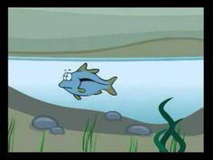 Água - Desenho Animado Ambiental - YouTube