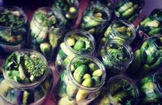 Domowe probiotyki – przepis na ogórki kiszone i małosolne Pickles, Sprouts, Cucumber, Paleo, Vegetables, Food, Essen, Beach Wrap, Vegetable Recipes