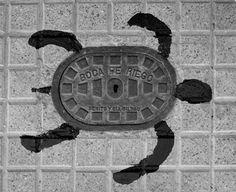 tortuga alcantarilla