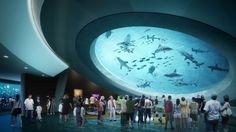 Planetário, aquário e exibições de ciência estão conectados no Museu de Ciência de Miami, considerado um dos mais sofisticados dos Estados Unidos.