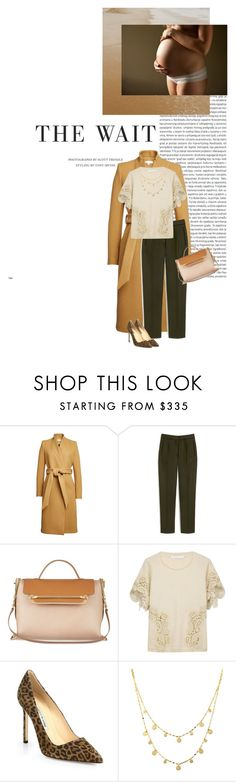 """""""Waiting can be Wonderful."""" by victoria-victrairo ❤ liked on Polyvore featuring Oris, IRO, Mulberry, Chloé, Manolo Blahnik and Lana"""