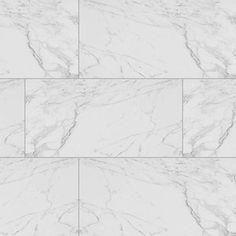 "Carrara 12"" x 24"" Porcelain Field Tile in White"