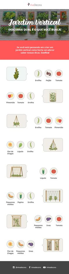 Infográfico - Jardim Vertical Outdoor Landscaping, Outdoor Gardens, Recycling, Home Staging Tips, Small Places, My Secret Garden, Plantar, Green Life, Home Collections