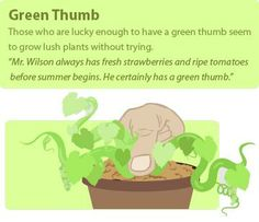 I wish I had a green thumb, but I somehow manage to kill all the plants I buy :( Great explanation of this colorful idiom! #learn #english #esl #toefl