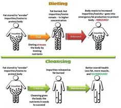 Dieting or Cleansing – Weight Loss or Toxin Loss?  Maybe you need to try something DIFFERENT!  | Flab to Fab with Plexus
