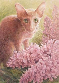 Oriental with Pink Lilac - Lynn Bonnette