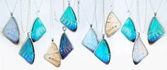These beautiful butterfly wing pendants are made by Audrey Botha - a talented designer and artist living in Cape Town. I really think they're gorgeous!