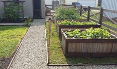 Make a raised bed garden with salvaged wood from pallets