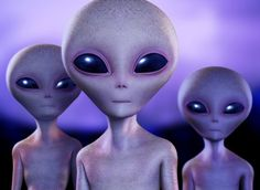How Aliens Can Help You Make More Money Online! I bet you've never thought about, how aliens could help you make more money online, too.Here's the thing, keep reading and you'll find out how they can. Alien Gris, Grey Alien, Les Aliens, Aliens And Ufos, Ancient Aliens, Discovery Channel, Fermi Paradox, Alien Encounters, Photomontage