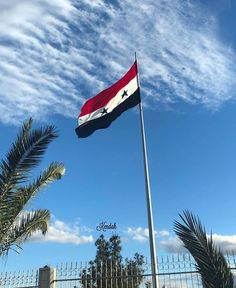 Landscape architecture syria flag wallpaper, syria culture, s. Syria Pictures, Syria Before And After, Save Syria, Palmyra Syria, Syria Flag, War Photography, Children Photography, Flag Art, Beach Trip