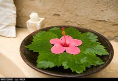 Bowl of water with flower and leaves Rangoli Designs Flower, Colorful Rangoli Designs, Flower Rangoli, Diwali Decorations At Home, Festival Decorations, Flower Decorations, Flower Arrangement Designs, Beautiful Flower Arrangements, Home Flower Decor