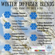 It's a whopping -3 degrees here in Minneapolis today...needless to say we haven't gone outside unless we've absolutely had to! These are a few winter diffuser blends I will be trying while we are i...