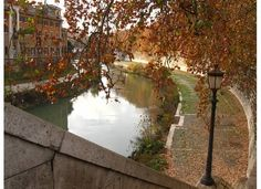 Fall along the Tiber