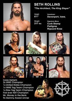 Wwe Seth Rollins, Seth Freakin Rollins, Wrestling Superstars, Wrestling Wwe, Seth Rollins Wallpaper, Aj Styles Wwe, Wwe Raw And Smackdown, Best Wrestlers, The Shield Wwe