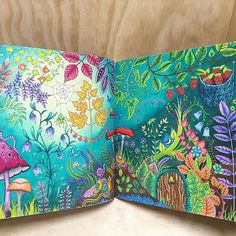 Finally completed the smaller details in this two page spread #johannabasford #enchantedforest #coloringbook #prismacolor
