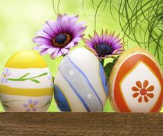"""""""Spring adds new life and new beauty to all that is."""" ~ Jessica Harrelson #Spring #Easter #Flower #Flowers #EasterBunny #EasterEggs #DIY #DoItYourself #Crafts #DIYCrafts"""