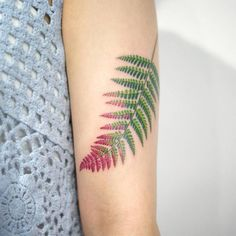 Fern leave tattoo on the left upper arm.