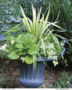 - Best soil for container gardening ...