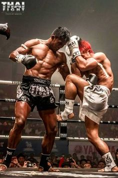 The awesome thai warrior Buakaw Banchamek delivering a devastating, deep gutbusting KO punch.