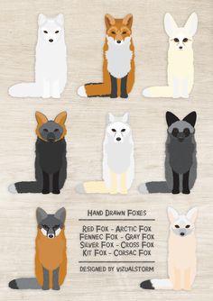Fox Illustration Set - 8 Hand Drawn Foxes, by VizualStorm Animals And Pets, Artic Animals, Cute Animals, Fox Illustration, Animal Illustrations, Fox Species, Fox Images, Fox Decor, Grey Fox