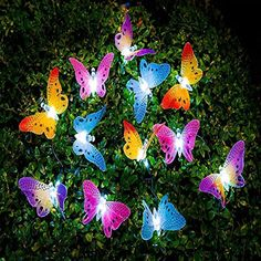 IMAGE® Butterfly Solar String Lights Decorative Multi-color Beautiful Animal Design Light 20 Led for Garden, Lawn, Patio, Wedding, Party, Bedroom, Outdoor DecorationBrainytrade. |  http://landscapeandlighting.net