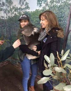 Photo: Kelli Berglund Holding A Koala August 6, 2015 - Dis411