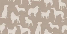Best In Show (W6181/01) - Osborne & Little Wallpapers - A cut out of different breeds of dogs repeated. Showing in Ivory and Silver.