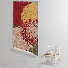 'Fair Harvard, Crowning Glory, Fair Dawn, and The Barrington' Wall Art Wallpaper, Unique Image, Botanical Gardens, Wall Murals, Dawn, Harvard, Bloom, Gallery, Floral