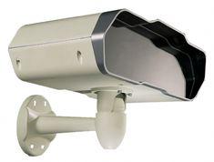 Iguana wide view camera.