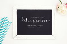 Blossom by OnTheSpotStudio on @creativemarket