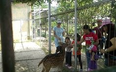 Feed little deer @ Jendela Alam