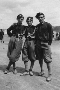 By 1933 knickerboxers and plus- fours which was commonly used as spotrs clothes.