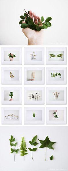 artpixie:  Romina Bacci