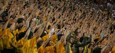 8 Reasons Why Baylor Is Awesome