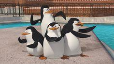 La DreamWorks annuncia Kung Fu Panda 3 e The Penguins of Madagascar #ComicConSw #comiccon #comicconit #sdcc