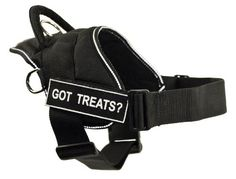 DT Fun Harness, Got Treats?, Black With Reflective Trim, Small - Fits Girth Size: 22-Inch to 27-Inch >>> Read more info by clicking the link on the image. #CatCollarsHarnessesandLeashes