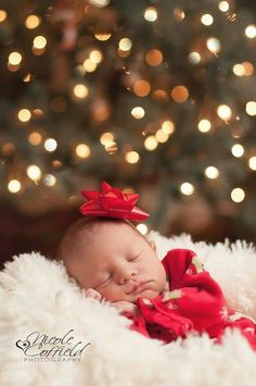 Newborn Christmas Pictures 12