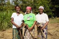 The economic empowerment of women is crucial to sustainable poverty reduction. To achieve this, the private sector and dev. Female Farmer, International Development, World Need, Working Together, Private Sector, People Around The World, Investing, Women, Woman